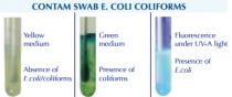 Detaliu test determinare E.coli